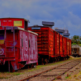by Suzi Harr - Transportation Trains (  )