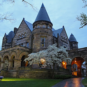 Buhl Mansion, Sharon, PA by Andrew Lawlor - Buildings & Architecture Architectural Detail
