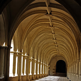 Cloisters by Michael Moore - Buildings & Architecture Other Interior ( cloisters )