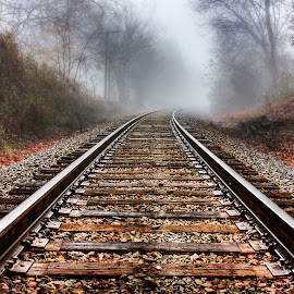 Vanishing Point by George Holt - Transportation Railway Tracks ( turn, train tracks, vanishing point, autumn, fog, fall, bend, train )