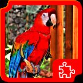 Birds Puzzles APK for Nokia