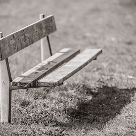 | Sit Down | by Photo Jovan - City,  Street & Park  City Parks ( peaceful, grass, no people, d800, park bench,  )
