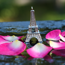 Towering by Dipali S - Artistic Objects Other Objects ( rose, tower, nature, petals, flora, pink, eifel, flower )