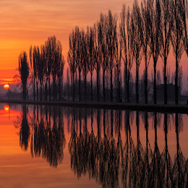 Reflections at dawn by Roberto Melotti - Landscapes Sunsets & Sunrises ( roberto melotti, dawn, sunset, reflections, trees, nikon d810, sunrise, italy )