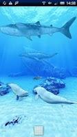 Screenshot of Beluga Whales Friends Trial