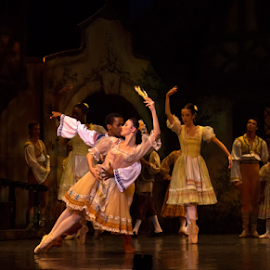 Coppelia Ballet by Trippie Visser - People Musicians & Entertainers ( dancers, performance, coppelia, ballet, stage )