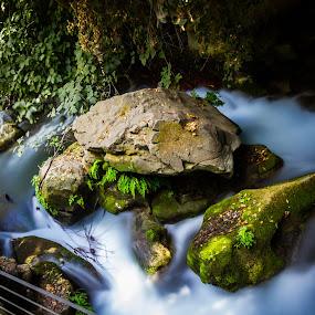 by Eliran Daniel - Landscapes Waterscapes