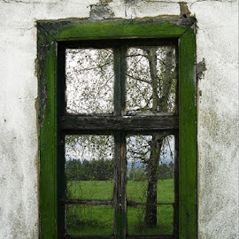 by Valentin Georgiev - Buildings & Architecture Other Exteriors ( window, experiment )