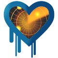 App HeartBleed Detector apk for kindle fire