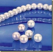 Perlen Gesamtbild 1