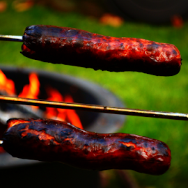 grilling is fun! by Pam Satterfield Manning - Food & Drink Meats & Cheeses ( flames, red, foods, food, food photography, hot dogs, fire, , renewal, green, trees, forests, nature, natural, scenic, relaxing, meditation, the mood factory, mood, emotions, jade, revive, inspirational, earthly )