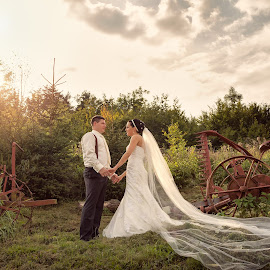 Light up my wedding by Daniel Venter - Wedding Bride & Groom ( farm, afternoon, sunny, wedding, bride and groom )