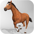 Free Download Horse Simulator 3D APK for Blackberry
