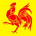 Actualités Belgique icon