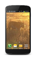 Screenshot of Tiger Free Video Wallpaper