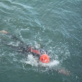 WEIRD!!! by Fiona Brett - Sports & Fitness Swimming