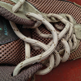 T-Shoes Too by Allen Crenshaw - Artistic Objects Clothing & Accessories ( laces, design, photography, tennis shoes )
