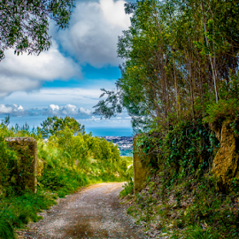Path to Farm Ville by Luciano Cruz - Landscapes Forests ( sky, forrest, sintra, sea, ocean, landscape, portugal )