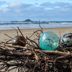 Nesting Nicely by Vonelle Swanson - Artistic Objects Glass ( sand, glass floats, driftwood, mountains, or, sea kelp, trees, ocean, beach, log, branches )
