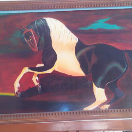 The Indian Stallion by Vinay Tr - Painting All Painting