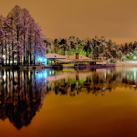 Parcul Romanescu by Alin Tatu - City,  Street & Park  City Parks ( colour, park, trees, lake, night )
