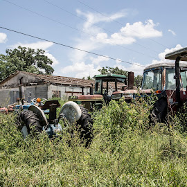 Tractors by Steve Bales - Transportation Other
