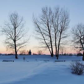 Suzdal Kremlin, Russia by João Branquinho - City,  Street & Park  Skylines ( winter, russia, park, snow, kremlin, suzdal )