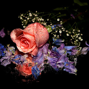 by Todd Klingler - Artistic Objects Still Life ( flower, bouquet,  )