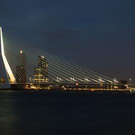 Erasmusbrug-Rotterdam by Radijsje VC - Buildings & Architecture Bridges & Suspended Structures ( rotterdam, erasmusbrug )