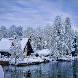 home on the river by Vedran Bozicevic - Buildings & Architecture Homes ( home, winter, landscape, river )