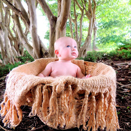 A dreamy 4 month old by Ashley Morris - Babies & Children Babies