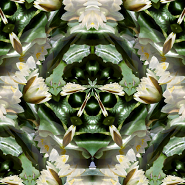 WL 2 Seamless by Tina Dare - Digital Art Abstract ( abstract, seamless, patterns, nature, designs, manipulated, distorted, digital art, flowers, water lilies, shapes )