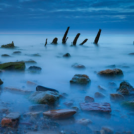 Spooky Bay by Mark Heslington - Landscapes Beaches ( seashore, blue, roots, sea, trees, ocean, long exposure, beach, rocks, mist,  )