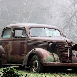 Possibilities by Patricia Rustin - Transportation Automobiles ( car, old, restoration, fog, antique, mist, abandoned,  )