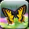 Butterflies Catch Craze 3D 1.0 Apk