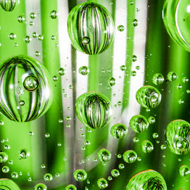 Water whisk by Betsy Wilson - Abstract Water Drops & Splashes ( whisk, water drops, kitchen utensil, green, floating, bubbles,  )