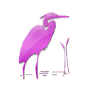 Birdwatching For Beginners icon