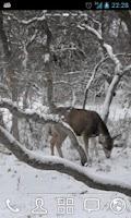 Screenshot of Winter Deer Live Wallpaper
