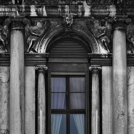Venetian window by Maya Cvetojevic - Buildings & Architecture Architectural Detail ( venezia, details, window, venice, venetian window )