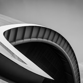 Love all your curves and edges by Nicole Williams - Novices Only Abstract ( roof the sage gateshead )