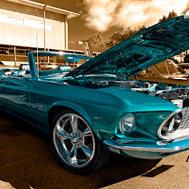 Convertible Mustang by Michael Lucchese - Transportation Automobiles ( mustang, muscle cars, rattle n hum, cars, australia, nikon, aqua, convertible, sydney, classic, photography, land, device, transportation )