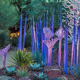 Chihuly at the Desert Botanical Garden by Lynne Parrish - Artistic Objects Glass ( sculptures, arizona, art, desert botanical gardens, glass, dbg, phoenix, dale chihuly )
