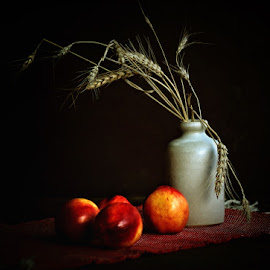 Nectarines by Rucsandra Calin - Artistic Objects Still Life ( still life, nectarines, artistic objects )