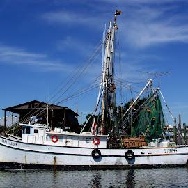 Shrimp Boat. by Walter Carlson - Transportation Boats ( netting, blue sky, shrimp, shrimp boat, boat )