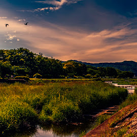 Kamo River by Jim Cunningham - Landscapes Travel ( clouds, sky, japan, kamo, grass, kyoto, landscape, river )
