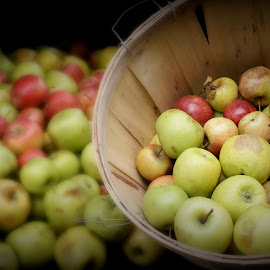 APPLES by Kelly Mitchell - Food & Drink Fruits & Vegetables ( red, green, basket, brown, apples )
