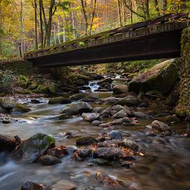 Roaring Fork Bridge by John Sharp - Landscapes Forests ( fall 2014 roaring fork gatlinburg )