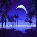 3D seaside night icon
