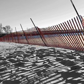 by Dipali S - Artistic Objects Other Objects ( michigan, sand, snow fence, lake michigan, holland beach, lake, beach, shadows )