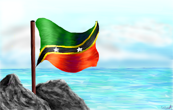 St. Kitts and Nevis flag :D